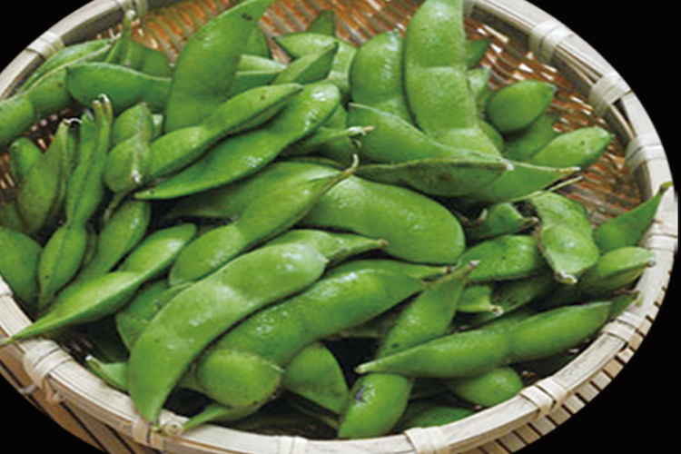 Edamame / Green Soy Beans